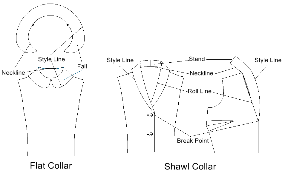 anatomy of the collar